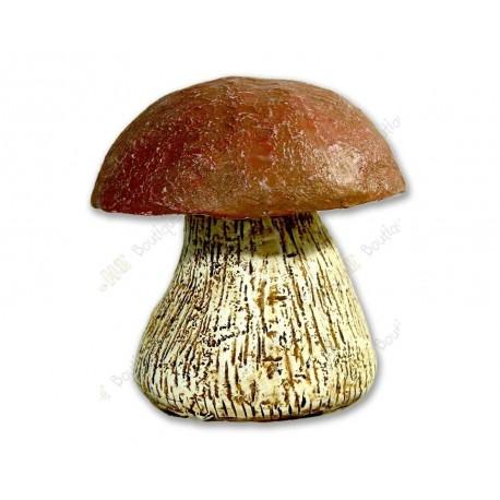 "Cache ""Mushroom"""