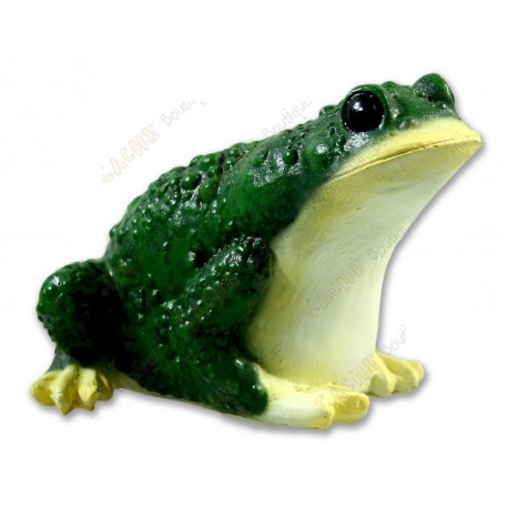 """Cache """"Frog"""""""