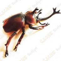 """Cache """"Insecto"""" - Gran escarabajo rinoceronte"""