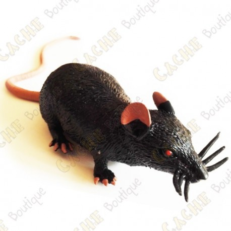 """Cache """"insect"""" - Black rat"""
